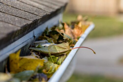 the gutter drain by the roof is covered full with the leafs